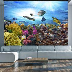 Fotótapéta - Coral reef