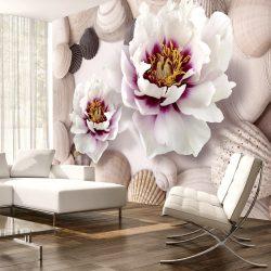 Fotótapéta - Flowers and Shells