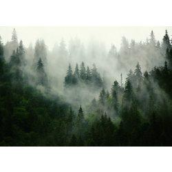 ködös erdő fotótapéta több méretben, alapanyagban