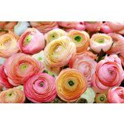 Rózsák 2298 több méretben, alapanyagban
