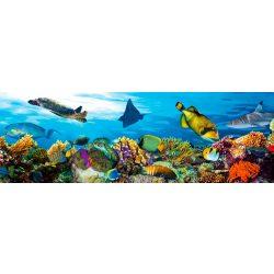 FISH öntapadós konyhai poszter