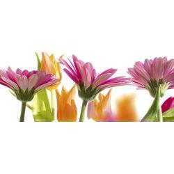 SPRING FLOWERS fotótapéta, poszter, vlies alapanyag, 375x150 cm