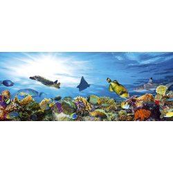 FISH fotótapéta, poszter, vlies alapanyag, 375x150 cm