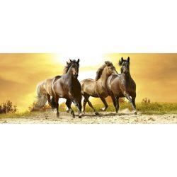 HORSES IN SUNSET fotótapéta, poszter, vlies alapanyag, 375x150 cm