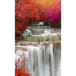 RAIN FOREST fotótapéta, poszter, vlies alapanyag, 150x250 cm