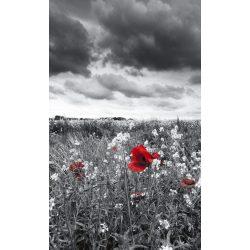 POPPIES BLACK fotótapéta, poszter, vlies alapanyag, 150x250 cm