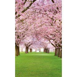 CHERRY TREES fotótapéta, poszter, vlies alapanyag, 150x250 cm