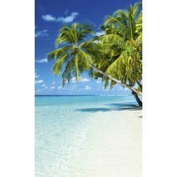 PARADISE BEACH fotótapéta, poszter, vlies alapanyag, 150x250 cm