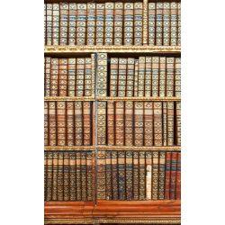 LIBRARY fotótapéta, poszter, vlies alapanyag, 150x250 cm