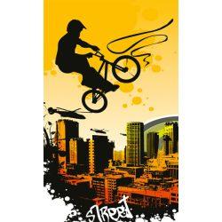 BICYCLE fotótapéta, poszter, vlies alapanyag, 150x250 cm