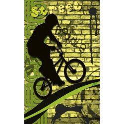 BICYCLE GREEN fotótapéta, poszter, vlies alapanyag, 150x250 cm