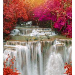 RAIN FOREST fotótapéta, poszter, vlies alapanyag, 225x250 cm