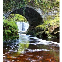 IRELAND fotótapéta, poszter, vlies alapanyag, 225x250 cm