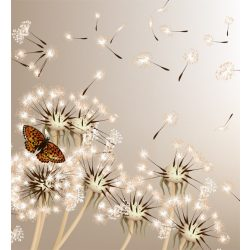 DANDELIONS AND BUTTERFLY fotótapéta, poszter, vlies alapanyag, 225x250 cm