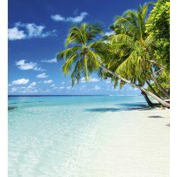 PARADISE BEACH fotótapéta, poszter, vlies alapanyag, 225x250 cm