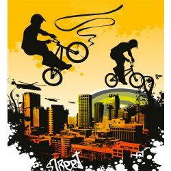 BICYCLE fotótapéta, poszter, vlies alapanyag, 225x250 cm