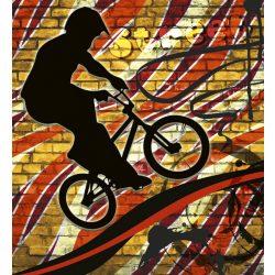 BICYCLE RED fotótapéta, poszter, vlies alapanyag, 225x250 cm