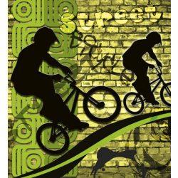 BICYCLE GREEN fotótapéta, poszter, vlies alapanyag, 225x250 cm