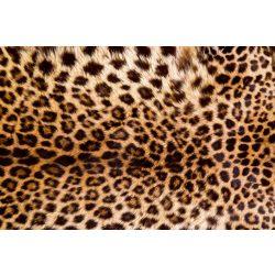 LEOPARD SKIN fotótapéta, poszter, vlies alapanyag, 375x250 cm