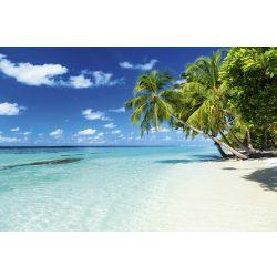 PARADISE BEACH fotótapéta, poszter, vlies alapanyag, 375x250 cm