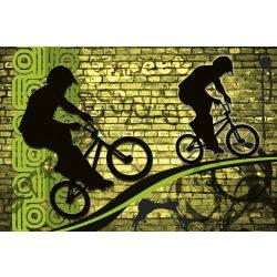 BICYCLE GREEN fotótapéta, poszter, vlies alapanyag, 375x250 cm