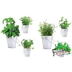 Fűszernövények sztatikus matrica üvegre d5d2e74d9f