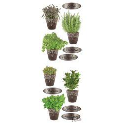 Fűszernövények cserépben matrica üvegre és falra
