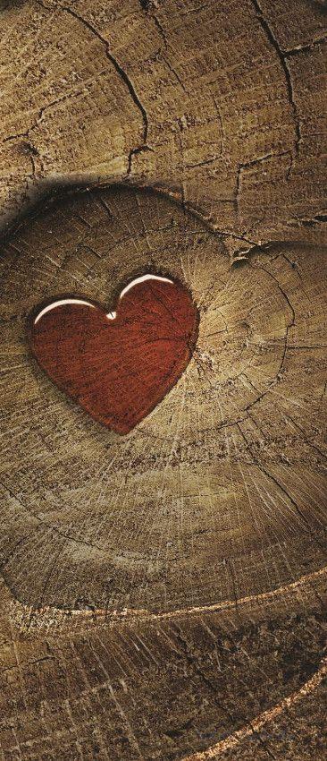 Szív vlies poszter, fotótapéta 135VET /91x211 cm/