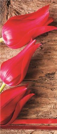 Tulipánok vlies poszter, fotótapéta 272VET /91x211 cm/