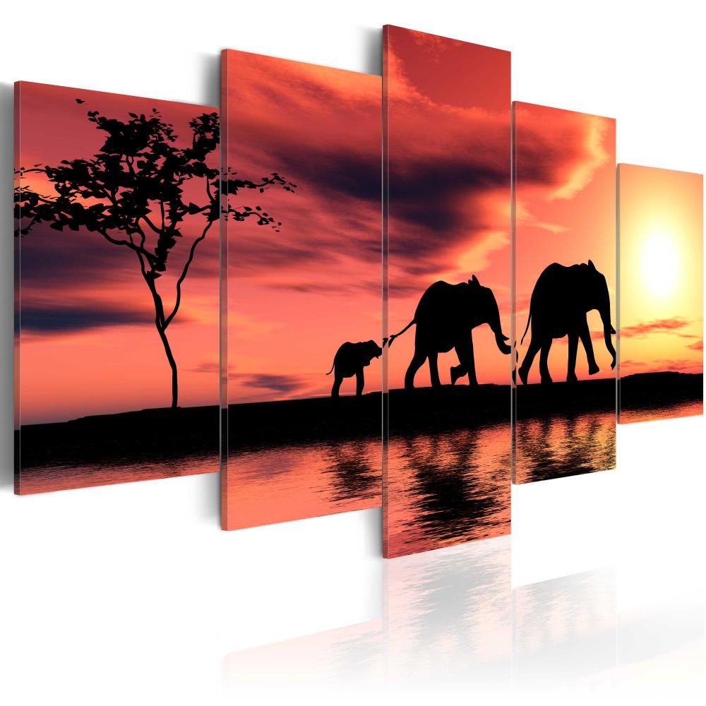 Kép - African elephants family