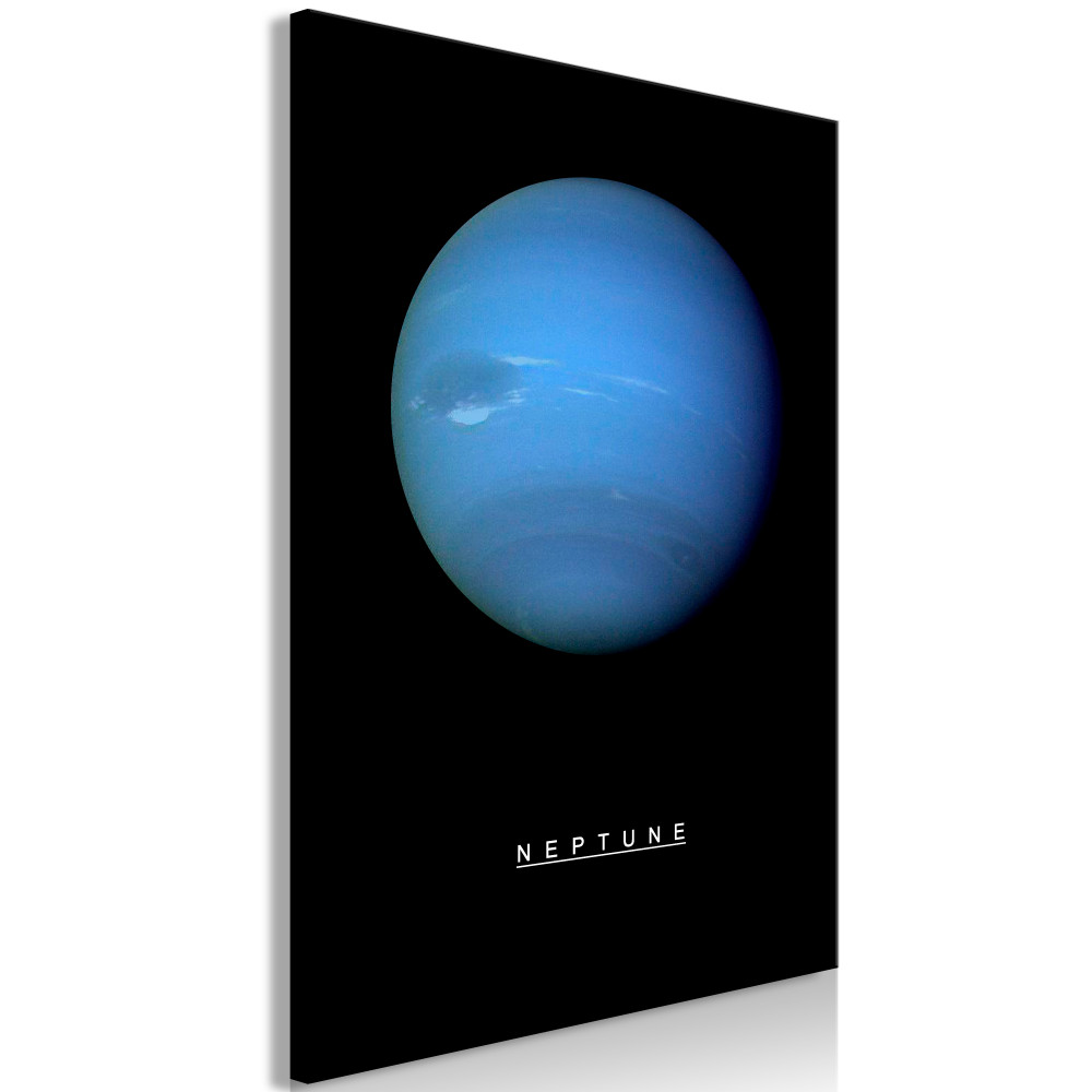 Kép - Neptune (1 Part) Vertical