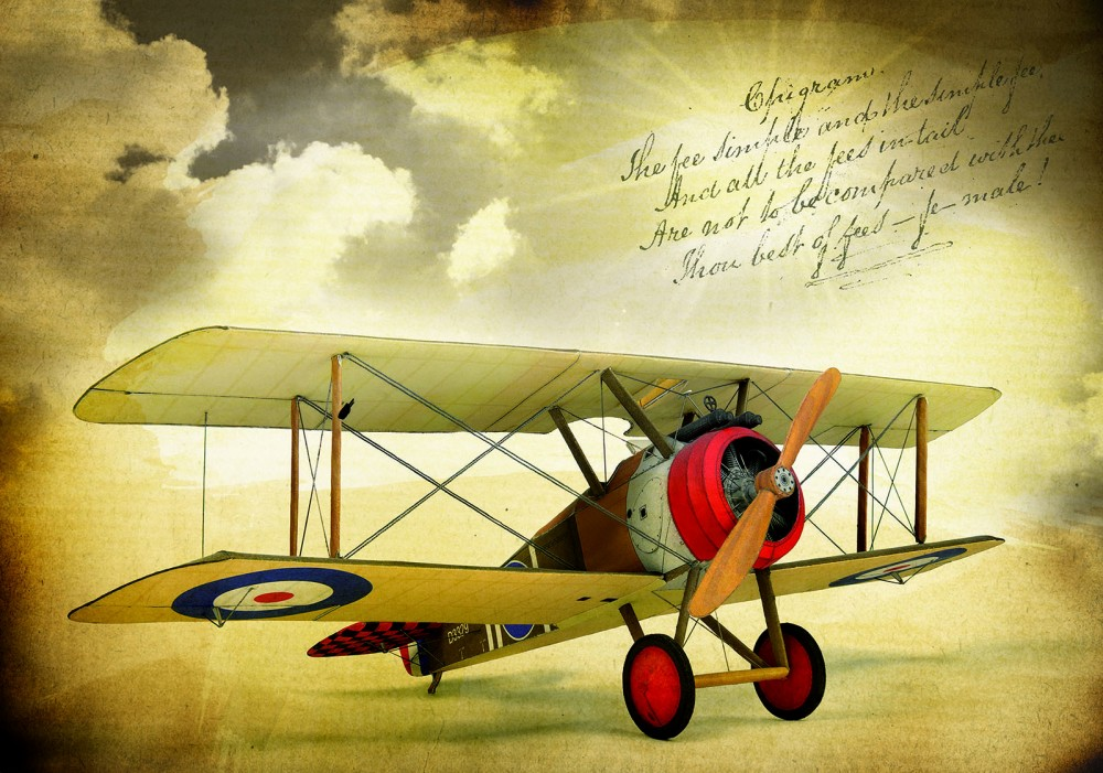 Repülő poszter, fotótapéta Vlies (368 x 254 cm)