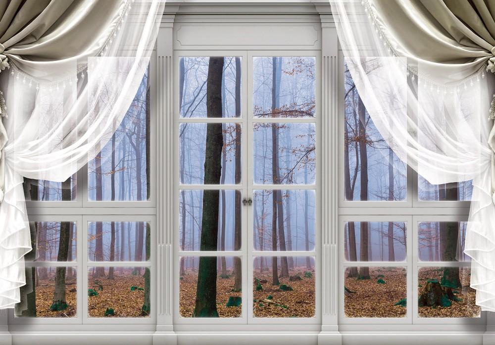 Őszi erdőre néző ablak poszter, fotótapéta (368 x 254 cm)