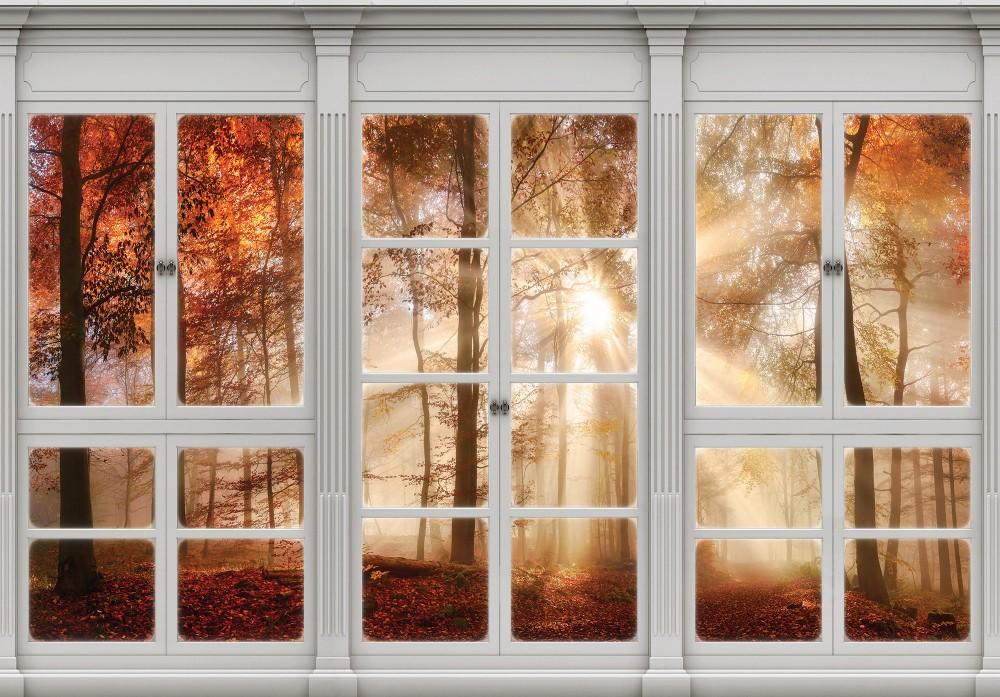 Erdőre néző ablak poszter, fotótapéta (368 x 254 cm)