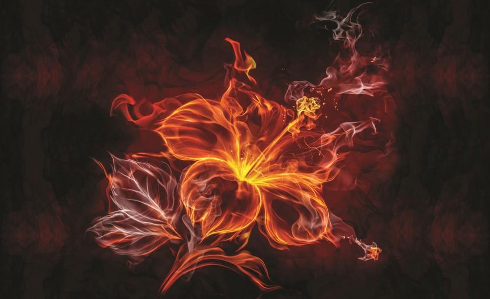 Virág poszter, fotótapéta 1105 több méretben, alapanyagban