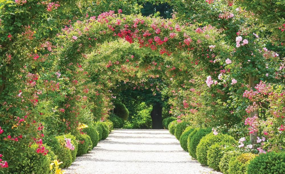 Virágos út 2731 fotótapéta több méretben, alapanyagban