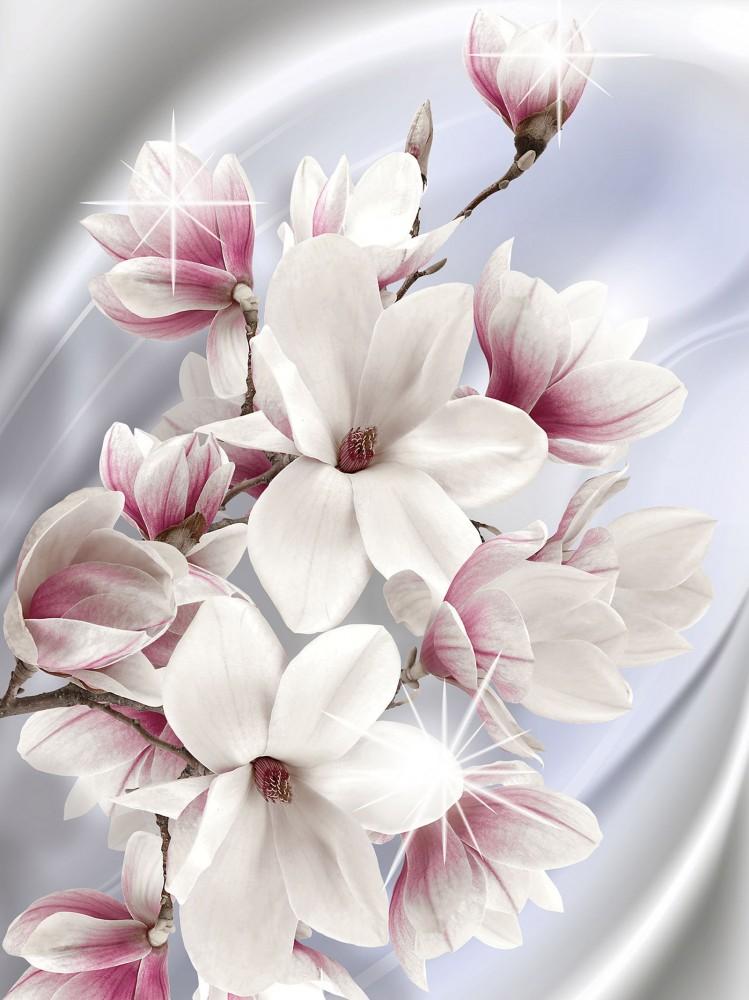 Virágok poszter, fotótapéta, Vlies (206x275 cm, álló)