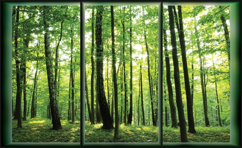 Erdő fotótapéta több méretben, alapanyagban